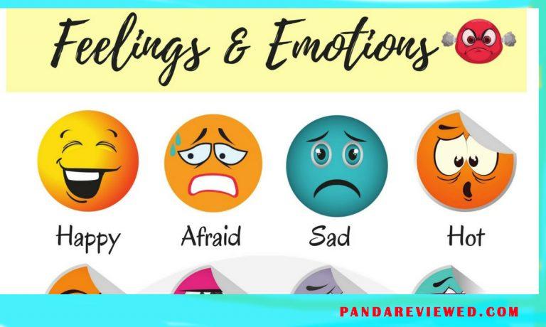 Feelings Emotions
